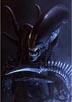 Alien vs Predator [Cast]