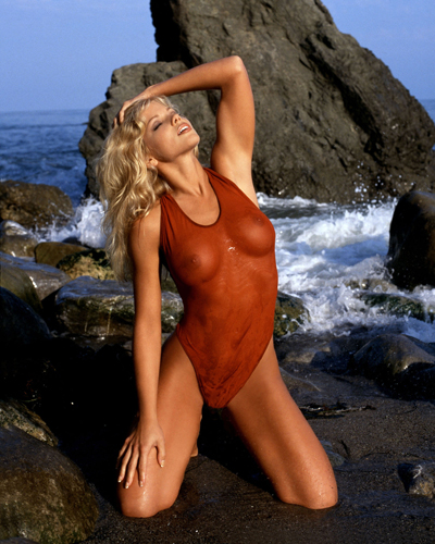 D'Errico, Donna [Baywatch] Photo