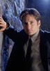 Duchovny, David [The X-Files]