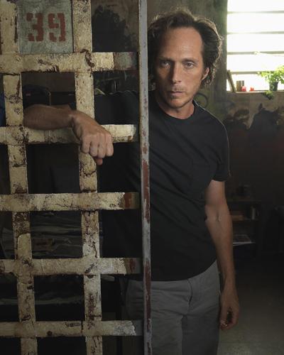 Fichtner, William [Prison Break] Photo