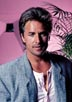 Johnson, Don [Miami Vice]