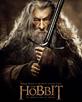 McKellen, Ian [The Hobbit]