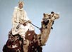 O'Toole, Peter [Lawrence of Arabia]