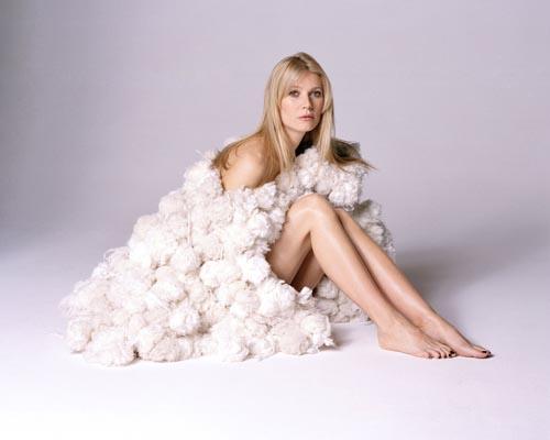 Paltrow, Gwyneth Photo