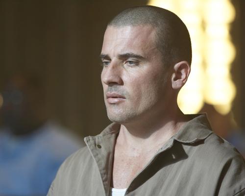 Purcell, Dominic [Prison Break] Photo