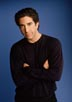 Schwimmer, David [Friends]
