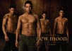 Twilight : New Moon [Cast]